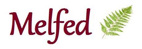 Melfed – New Shop & Workshop/ Gweithdy & Siop Newydd